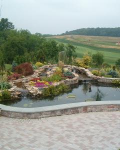 Ponds   Water Gardens   Lily Pad Ponds   Backyard Pond Design