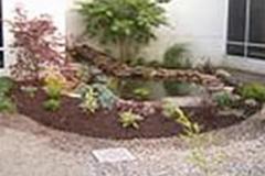 Ponds | Water Gardens | Lily Pad Ponds | Backyard Pond Design